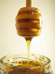 Honey is ancient food (Photo: Hillary Stein)