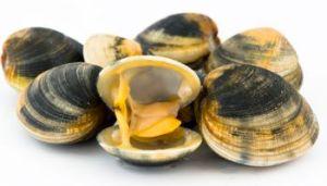 Beware of marine biotoxins