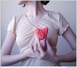Carnosine can protect the heart (Photo:  Gabriela Camerotti)