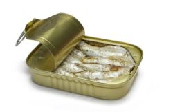 Sardines one fish high in omega-3