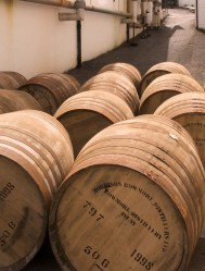 Ellagic acid migrate from oak casks to whisky (Photo: peridude)