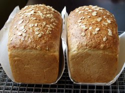Delicious oat bread is even good for you (Photo: Theresa Carle-Sanders)