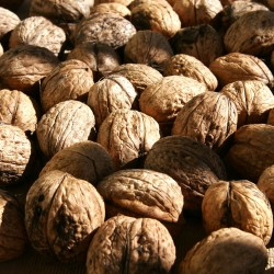 Seven walnuts a day to get the potential health benefits (Photo: Wikimedia)
