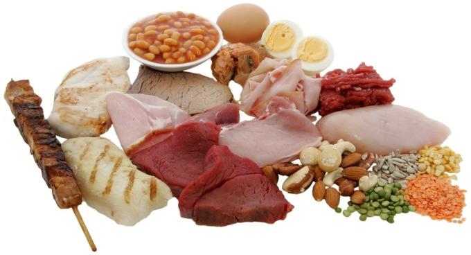Animal_foods